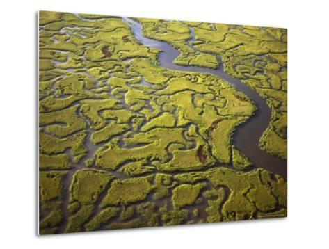 Aerial View of Marshes and Waterways Near Georgia's Sea Islands-Michael Melford-Metal Print