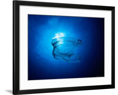 Floating Plastic Bag Dangerously Resembles a Sea Jelly-Robert Halstead-Framed Art Print