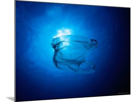Floating Plastic Bag Dangerously Resembles a Sea Jelly-Robert Halstead-Mounted Photographic Print
