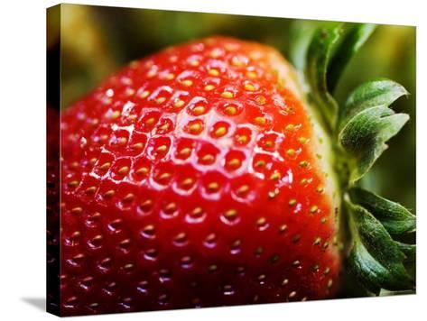 Strawberry-Ray Laskowitz-Stretched Canvas Print