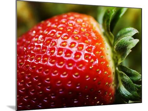 Strawberry-Ray Laskowitz-Mounted Photographic Print
