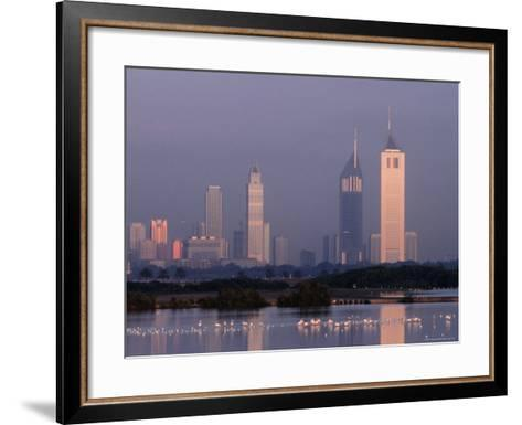 Waterbirds at the Khor Dubai Wildlife Sanctuary on Dubai Creek-Mark Daffey-Framed Art Print