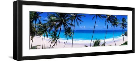 Coconut Trees Along Bottom Bay-Holger Leue-Framed Art Print
