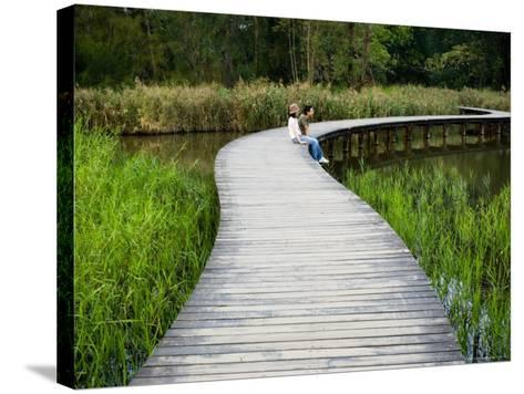 People on Walking Trail Through the Hong Kong Wetland Park, Tin Shui Wai, New Territories-Michael Coyne-Stretched Canvas Print