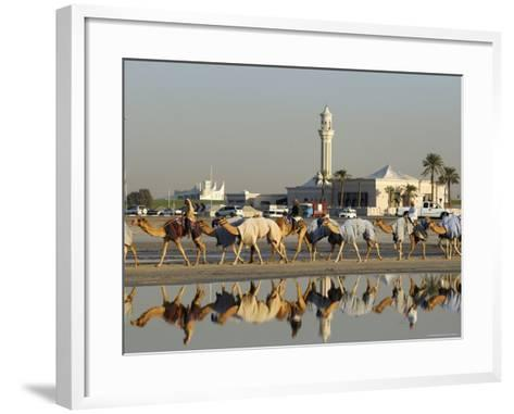 Camels at Dubai Camel Racecourse, Late Afternoon-Terry Carter-Framed Art Print