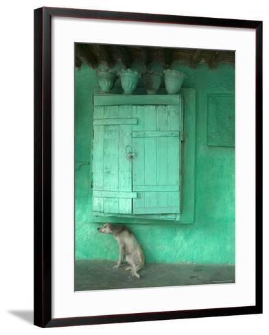 Dog Scratching Himself Against a Window Ledge-Gavin Quirke-Framed Art Print