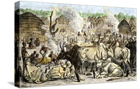 Cattle Farm of the Dinka, a Swahili-Speaking People in Africa, 1800s--Stretched Canvas Print