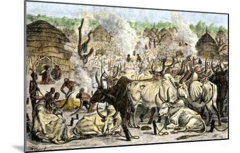 Cattle Farm of the Dinka, a Swahili-Speaking People in Africa, 1800s--Mounted Giclee Print