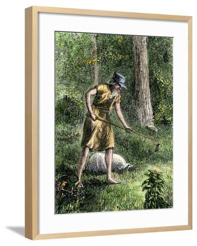 Johnny Appleseed Planting Apple Trees in the Ohio Wilderness--Framed Art Print