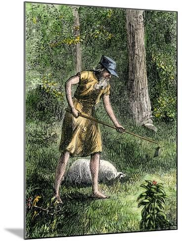 Johnny Appleseed Planting Apple Trees in the Ohio Wilderness--Mounted Giclee Print