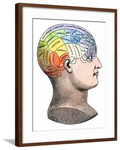 Phrenology Model of the Locations of the Various Organs of Mind in the Human Head--Framed Art Print