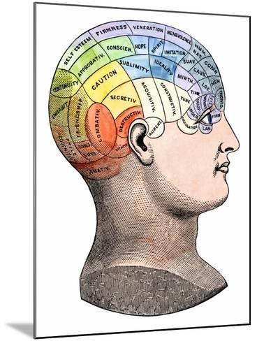 Phrenology Model of the Locations of the Various Organs of Mind in the Human Head--Mounted Giclee Print