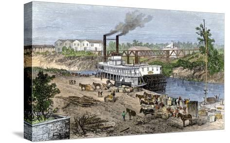 Steamboat Loading Cotton on Buffalo Bayou, Connected to the Gulf of Mexico, Houston, Texas, 1870s--Stretched Canvas Print