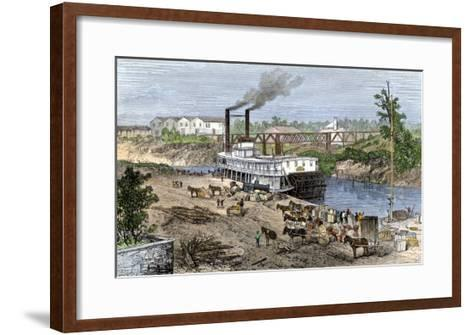 Steamboat Loading Cotton on Buffalo Bayou, Connected to the Gulf of Mexico, Houston, Texas, 1870s--Framed Art Print