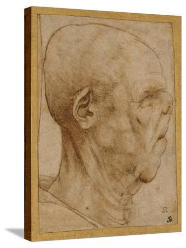 Caricature of the Head of an Old Man, in Profile to the Right, c.1507-Leonardo da Vinci-Stretched Canvas Print