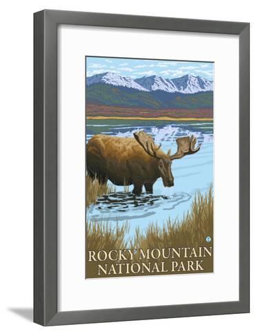 Rocky Mt National Park, CO, Moose Drinking at Lake-Lantern Press-Framed Art Print