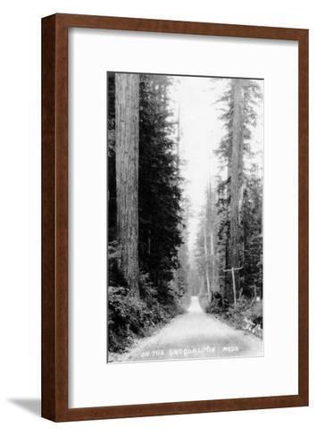 Snoqualmie Pass, Washington, View of a Wooden Dirt Road-Lantern Press-Framed Art Print