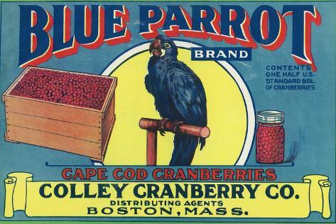 Boston, Massachusetts, Blue Parrot Brand Cape Cod Cranberry Label-Lantern Press-Stretched Canvas Print