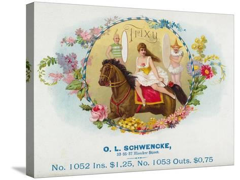 Trixy Brand Cigar Box Label-Lantern Press-Stretched Canvas Print