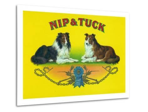 Nip and Tuck Brand Cigar Box Label, Rough Collies-Lantern Press-Metal Print