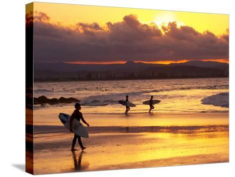 Surfers at Sunset, Gold Coast, Queensland, Australia-David Wall-Stretched Canvas Print