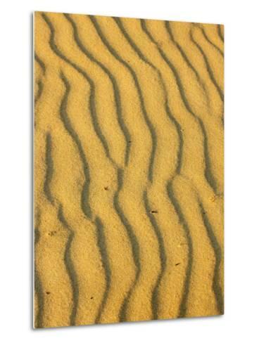 Sand Ripples, Queensland, Australia-David Wall-Metal Print