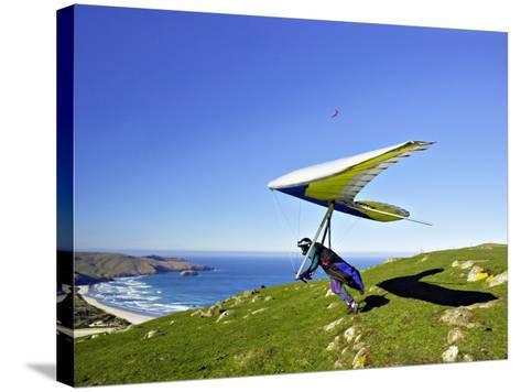 Hang Glider, Otago Peninsula, near Dunedin, South Island, New Zealand-David Wall-Stretched Canvas Print