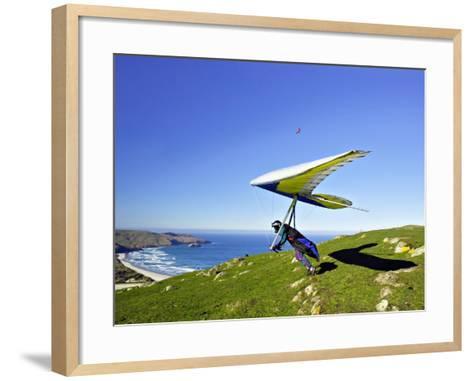 Hang Glider, Otago Peninsula, near Dunedin, South Island, New Zealand-David Wall-Framed Art Print