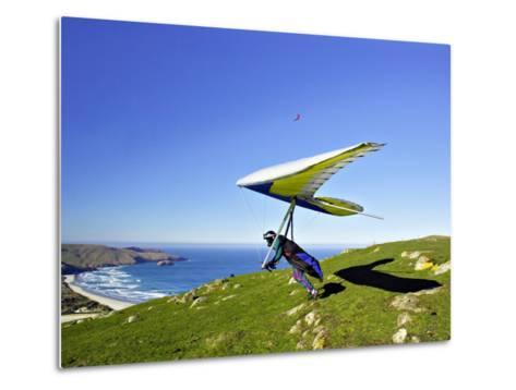 Hang Glider, Otago Peninsula, near Dunedin, South Island, New Zealand-David Wall-Metal Print
