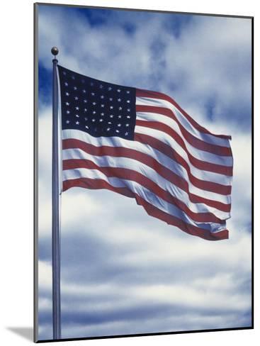 48 Star American Flag-Dmitri Kessel-Mounted Photographic Print