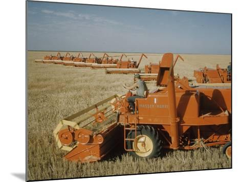 Harvest Story: Combines Harvest Wheat at Ranch in Texas-Ralph Crane-Mounted Photographic Print
