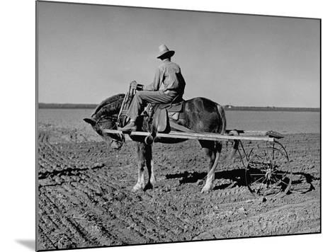 Horse Assisting the Farmer in Plowing the Field-Carl Mydans-Mounted Photographic Print