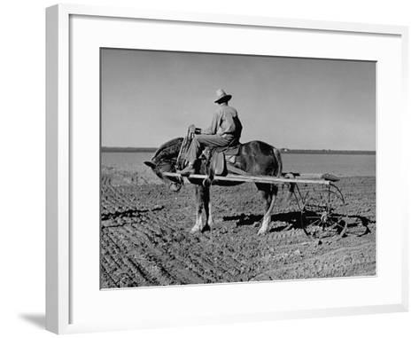 Horse Assisting the Farmer in Plowing the Field-Carl Mydans-Framed Art Print