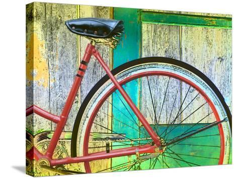 Bicycle Resting Against Colorful Barn Door--Stretched Canvas Print