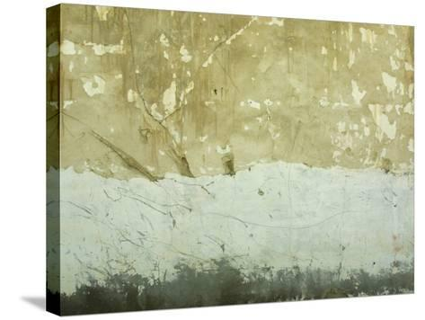 Close-Up of Weathered and Rundown Cement Wall--Stretched Canvas Print