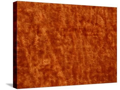 Burnt Orange Colored Surface Covered with Mottled and Blotchy Pattern--Stretched Canvas Print