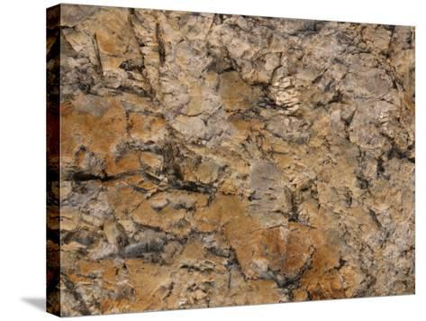 Close-Up of Rough Brown Surface--Stretched Canvas Print
