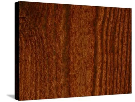 Close-Up of Vertical Woodgrain Pattern--Stretched Canvas Print