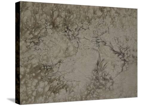 Abstract Billowing Pattern in Gray--Stretched Canvas Print
