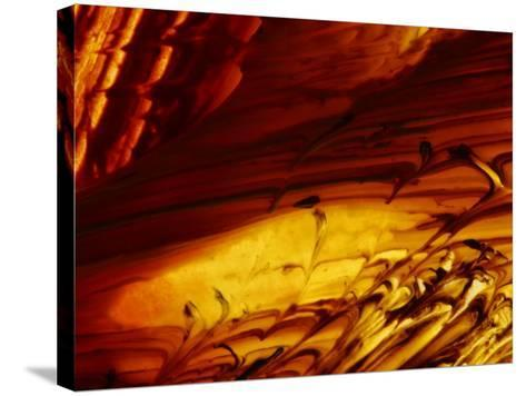 Brush Strokes in Vibrant Paint--Stretched Canvas Print