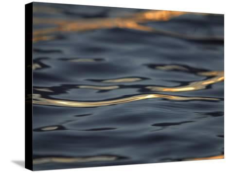 Rippling Water Glinting Light in a Reflection--Stretched Canvas Print