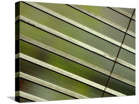 Tilted and Cropped View of Venetian Blind--Stretched Canvas Print
