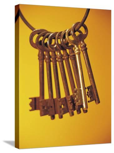 Group of Brass Keys on Keyring--Stretched Canvas Print