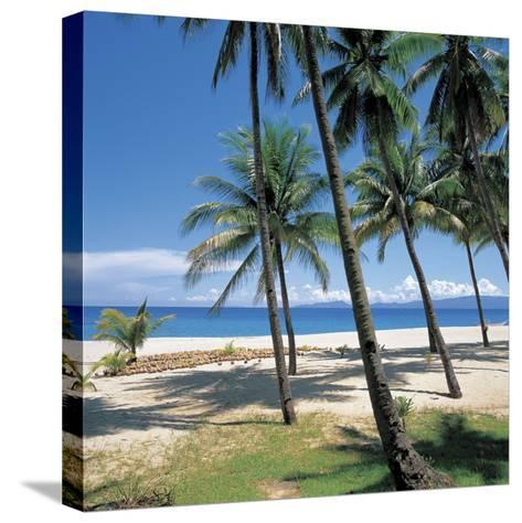 Tall Tropical Palm Trees on Sandy Beach--Stretched Canvas Print