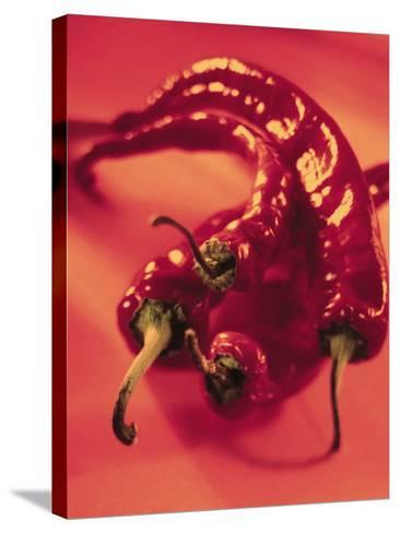 Close-Up of Fresh and Hot Chili--Stretched Canvas Print