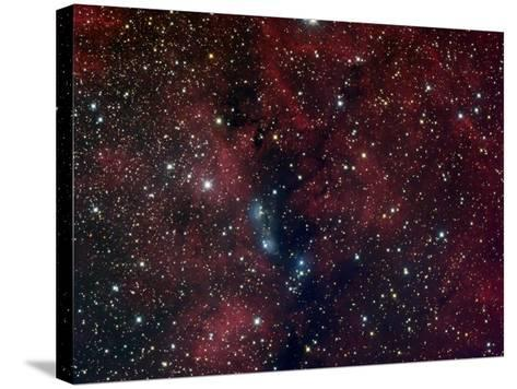 NGC 6914, Reflection Nebula in Cygnus-Stocktrek Images-Stretched Canvas Print