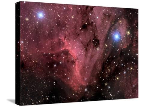 Pelican Nebula-Stocktrek Images-Stretched Canvas Print