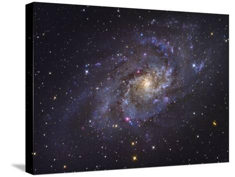 Triangulum Galaxy-Stocktrek Images-Stretched Canvas Print
