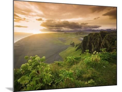 Black Sand Beach, Dyrholaey, South Coast, Iceland-Michele Falzone-Mounted Photographic Print