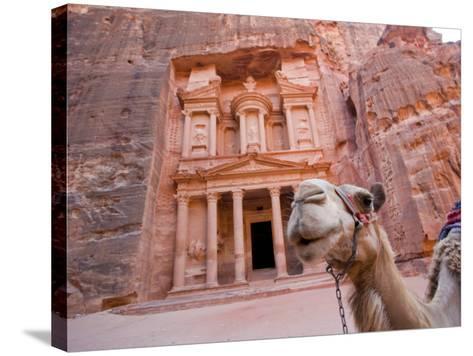 The Treasury, Petra, Jordan-Michele Falzone-Stretched Canvas Print